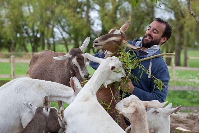 James Whetlor met zijn geiten