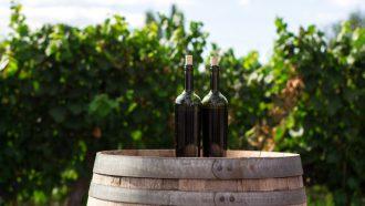 twee wijnen op een ton / cool climate wijnen
