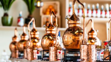 rum and gin distillery