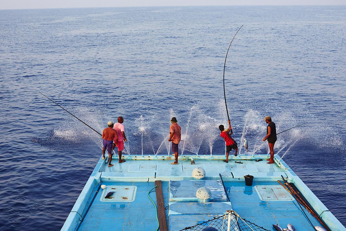 Stop foute tonijn en ga voor duurzaam gevangen tonijn