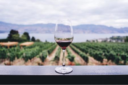 Culinaire bestemmingen voor wijn