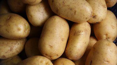 Afbeelding bij aardappelen koken