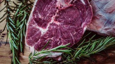 Vlees ontdooien